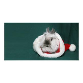 Lionhead rabbit Christmas Card