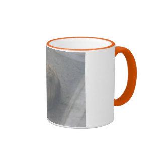 Lions 001 Mug