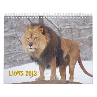LIONS 2013 CALENDAR