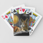 Lions and elephant in Africa Bicycle Poker Deck