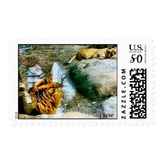 Lions and Reflections Postage