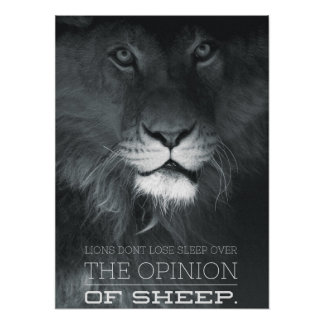 Lions Don't Lose Sleep Over The Opinion Of Sheep Posters