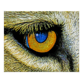 Lions Eye Close Up (2) Poster