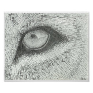 Lion's Eye | Customizable Poster