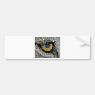 Lions Eye, Realistic Poster Bumper Sticker