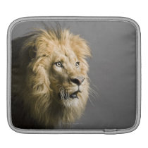 Lion's face sleeve for iPads