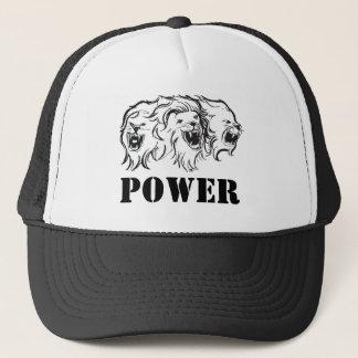 lions hat - power