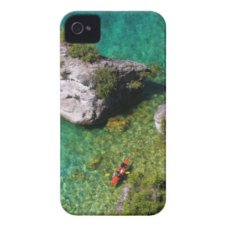 Lions Head Kayakers Case-Mate iPhone 4 Case