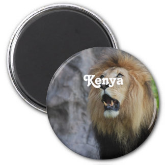 Lions in Kenya Magnet