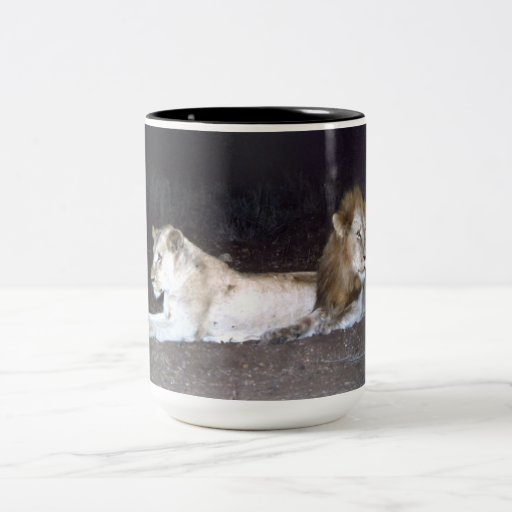lions in knp Two-Tone coffee mug