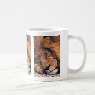 Lions in the Wild Gifts and Tees Classic White Coffee Mug