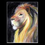Lions Lion Profile Leo Portrait Charcoal Drawing Postcard