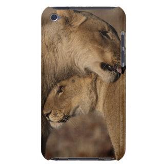 Lions (Panthera leo) pair bonding, Skeleton iPod Touch Case-Mate Case