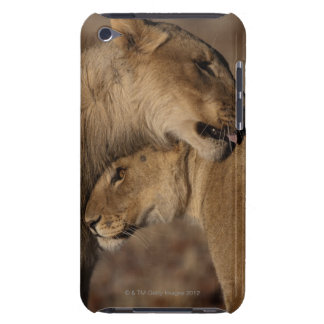 Lions (Panthera leo) pair bonding, Skeleton iPod Touch Cover