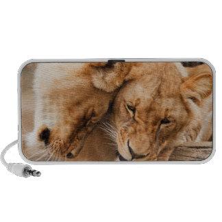 lions speaker
