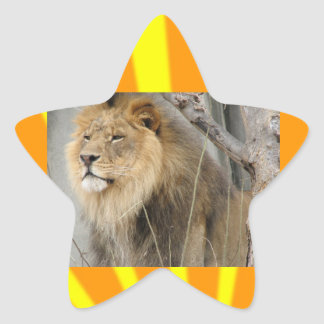 Lions Stickers