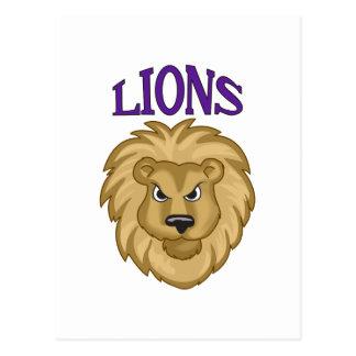 LIONS TEAM POSTCARD