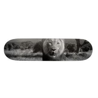 Lions Wildcat Skateboard