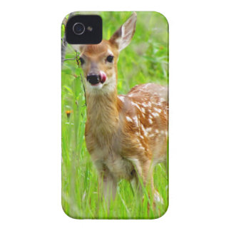 Lip Licking Fawn iPhone 4 Case-Mate Case