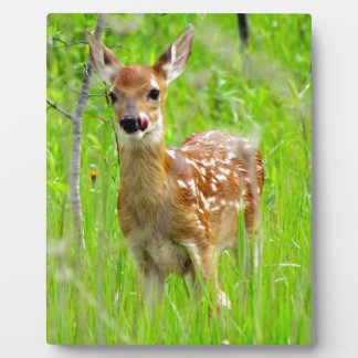 Lip Licking Fawn Plaque