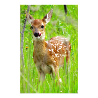 Lip Licking Fawn Stationery