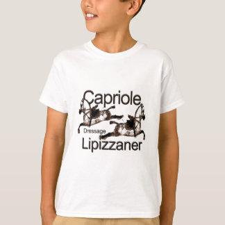 Lipazzaner-Dressage-Cabriola Playera