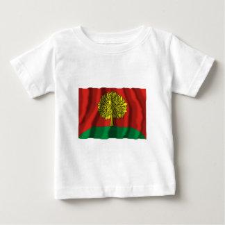 Lipetsk Oblast Flag Shirts