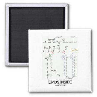 Lipids Inside (Chemical Molecules) Magnet