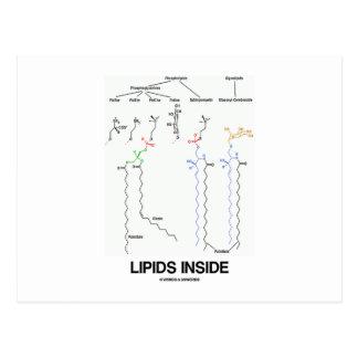 Lipids Inside (Chemical Molecules) Postcard