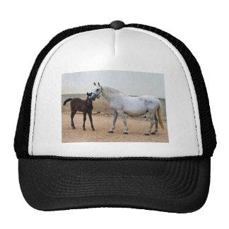 Lipizzan Mare and Foal Trucker Hat