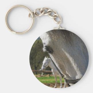 Lipizzaner horse basic round button keychain