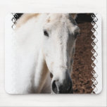 Lippizaner Horse Mouse Pad