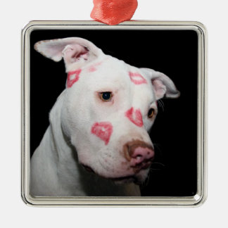 Lipstick Kisses of Love for the Pitbull Dog Metal Ornament