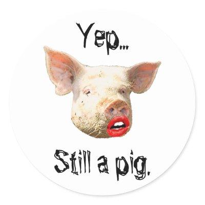 pig with lipstick still a pig
