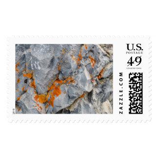 Liquen anaranjado en rocas timbre postal