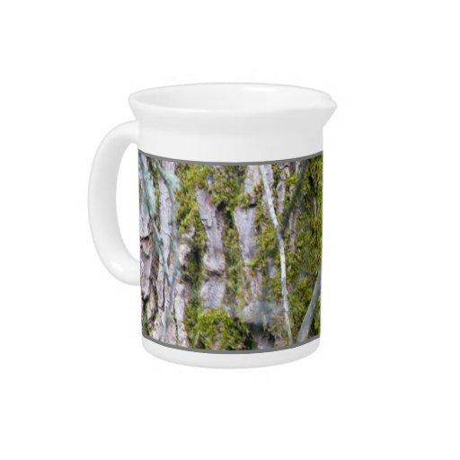 Liquen, corteza, y ramas jarras para bebida