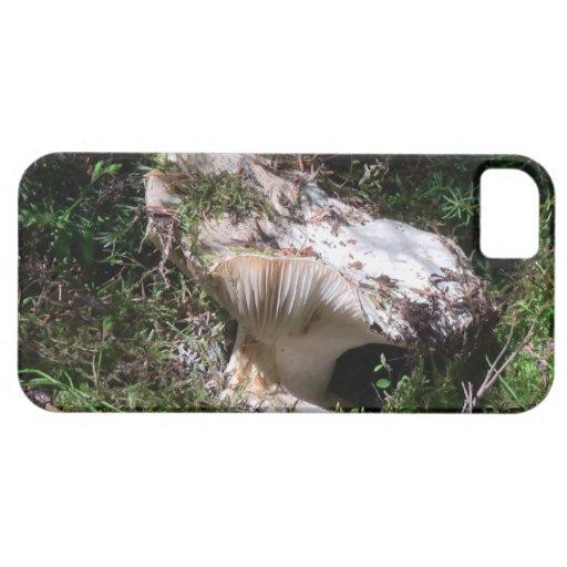 Liquen de la botánica del musgo de los hongos de l iPhone 5 cárcasa