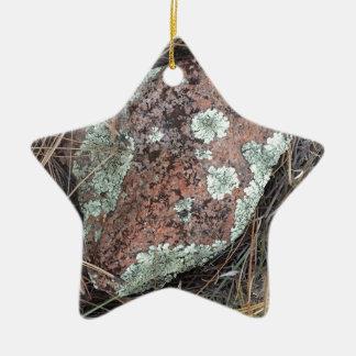 Liquen de la roca del musgo adorno navideño de cerámica en forma de estrella