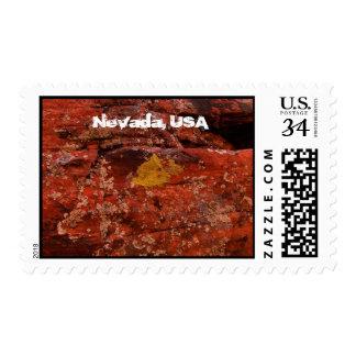 Liquen en el desierto; Recuerdo de Nevada Franqueo