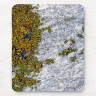 Liquen verde y rojo en el granito mouse pads