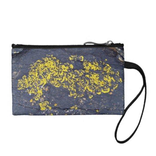 Liquenes amarillos en una roca negra