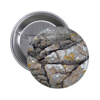 Liquenes amarillos en una textura de la roca pins