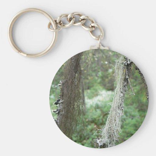 Liquenes en árbol llavero personalizado