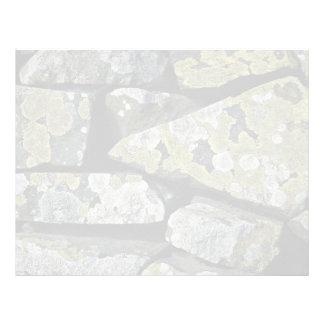 Liquenes en la pared plantilla de membrete