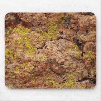 Liquenes en la roca #1 mouse pad