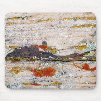 Liquenes en la roca #2 mouse pads