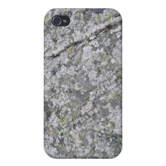 Liquenes en textura enorme de la roca iPhone 4 protector