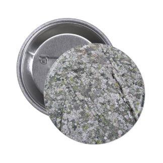 Liquenes en textura enorme de la roca pins