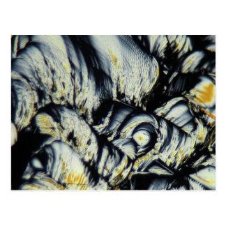Liquid crystals under a microscope postcard