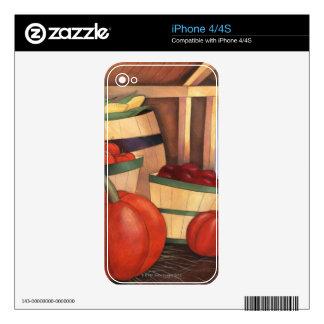 Liquid Library 11 iPhone 4 Skin